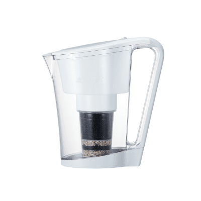 Wellness Within Singapore Fluoride Free Water Filter
